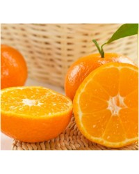 Kg Naranjas Ecológicas Sevillanas Mesa